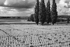 Tyne Cot Cemetery, Zonnebeke (bm^) Tags: reportage zonnebeke westvlaanderen belgië cemetery kerkhof world war i worldwari brittish grave graves zwartwit bw blackwhite nikon d700 nikond700 zf2 parc plein park planart1450 zeiss carl planar5014zf be tyne cot tynecot
