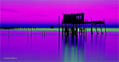 Stilt House at dawn (Kevin B Photo) Tags: fujivelvia50 cedarkeyflorida morning dawn magenta green lines nature landscape scenic horizontal panoramic boat birds avian brownpelicans usa america graphic color colorful wild vivid saturated water saltwater gulfofmexico stilthouse weathered docks silhouette longexposure viewcamera 4x5large format tripod