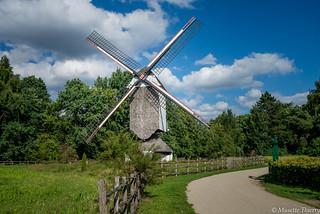 Moulin - Domaine provincial de Bokrijk