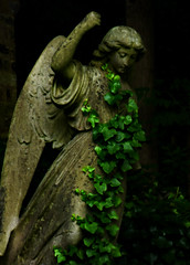 Clothed By Nature (Steve Taylor (Photography)) Tags: highgate cemetery ivy creeper memorial black brown green lowkey lady woman uk gb england greatbritain unitedkingdom london plant grave graveyard tomb