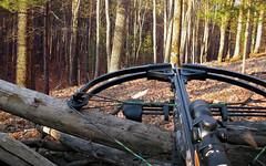crossbow crossbowhunting hunting deerhunting