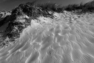 sand ripples2