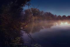 misty blues (cherryspicks (on/off)) Tags: landscape mist croatia savica lake reflection blue mood water light zagreb nature tree