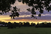 20170814_Knowle_Sunrise (Damien Walmsley) Tags: morning sunrise knowle leaves colours start day clouds park jobsclose