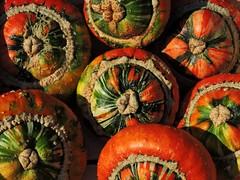 Kürbiszeit. (Wallus2010) Tags: kürbis herbst markt celle wochenmarkt autumn