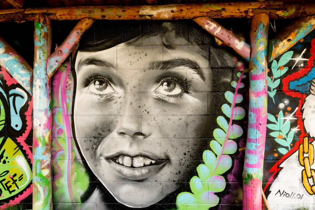 WATERFORD WALLS [AN ANNUAL INTERNATIONAL STREET ART FESTIVAL]-132250