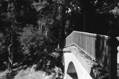 Bridge (•Nicolas•) Tags: accolay bw balade bourgogne burgundy canal fp4 france ilfosol m4p nb nivernais walk bridge forrest foret tree arbre focus nicolasthomas pont parapet