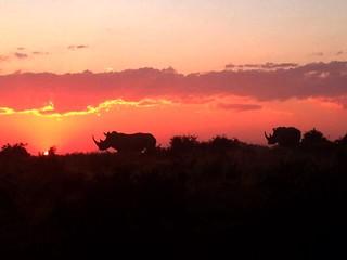 South Africa Hunting Safari - Eastern Cape 44