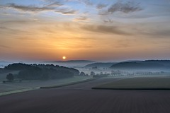 *Eifel -Toskana* (albert.wirtz) Tags: sunrise sonnenaufgang albertwirtz wittlich wittlichersenke valleyofwittlich bergweiler deutschland europa europe germany rheinlandpfalz rhinelandpalatinate natur nature natura landscape landschaft felder spätsommer sommer summer maisfelder morgenrot dunst nebel mist fog nebbia niebla bruma brume brouillard sky morgenstimmung morningmood moseleifel eifelmosel südeifel eifel eifeltoskana filter haidagrauverlauffilternd09soft haidafilter grauverlauffilter twilight goldenhour goldenestunde morgennebel morningmist cloudsstormssunsetssunrises hdr