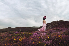 What The Flowers Taught Me (Furcifer07) Tags: sychnant pass wales uk britain flowers purple crown princess brunette sky mountain mountains fields wildflowers canon 5d mark iii loren schmidt tulip heather vintage gown pink violet lavender conceptual fine art clouds fantasy surreal colorful welsh conwy