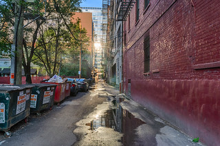 Down in the Alley
