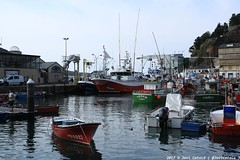IMG_0659 (- Javi -) Tags: luarca asturias puerto mar paisaje verde sea landscape town city boat barcos ciudad españa
