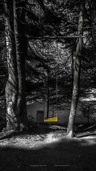 Forest swing (papkostantin) Tags: splashcolor colors colorsplash forest trees nature naturegreece ftiotida oiti pavliani greece mountain swing playground forestpark landscape shadows bnw monochrome