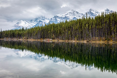 Mountains, Forest, and Lake (Kirk Lougheed) Tags: alberta banff banffnationalpark canada canadian canadianrockies herbertlake icefieldsparkway autumn fall forest lake landscape mountain nationalpark outdoor park reflection snow water