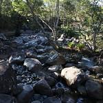 o rio (9)