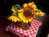 Sunflowers (Elise de Korte) Tags: fr france frankrijk ldf lafrance bloei bloeien bloem bloemen boeket fleur fleurs flower flowers sunflower tournesol zonnebloem