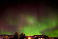 The Zipper Trick (LC27LadyB) Tags: northernlights merritt britishcolumbia auroraborealis green night sky stars