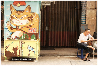 The Day With A Cat Face 貓臉的歲月 - Hong Kong XT4961e