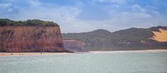 Bahia dos Golfinhos (Karl Max Fernandes) Tags: natal passeio pipa rn rio grande do norte brazil brasil madero praia beach dolphin golfinhos mar sea