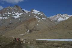 IMG_0673 (y.awanohara) Tags: kailash kora kailashkora ngari tibet may2017 yawanohara