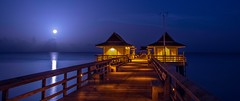 Moonset at Naples Pier (Charles Patrick Ewing) Tags: ocean gulf water landscape landscapes darkness lowlight pier architecture moon moonset sky skies sunrise sun color blue night nighttime daybreak dawn panorama artistic art everything all bridge