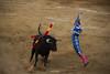 Toros en Nerva 19/08/2017 (Carlos Rodríguez Aguilar) Tags: torosnerva fotografíacarlosrodríguez elfandi nerva