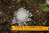 (Sandra Hieber) Tags: hail hagel schiesen gewitter thunderstorm rain regen canon bayern bavaria storm sturm unwetter canon1740mml