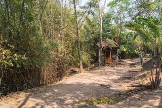 mae fah luang - thailande 38