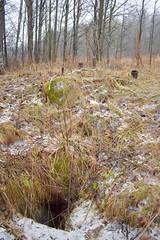 DSC_4454 (PorkkalaSotilastukikohta1944-1956) Tags: hylätty neuvostoliitto bunkkeri porkkalanparenteesi abandoned soviet bunker porkkala kirkkonummi suomi finland exploring landscape zif25