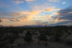 IMG_2765 copy (burlap_sack) Tags: joshuatree summer 2017 hicksville hicksvilletrailerpalace dude desert california yuccavalley