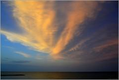 Fleur du soir (bleumarie) Tags: été été2017 mididelafrance suddelafrance catalogne france méditerranée mer midi nikond3100 pyrénéesorientales roussillon saintemarie saintemarielamer sud vacances bleu nuage ciel soleilcouchant crépuscule eau rocher jetée bleumarie mariebousquet
