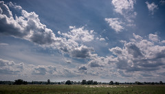 20170731-_MG_6223-bewerkt.jpg (RobMenting) Tags: 70d eos landscape noordbrabant nature canon europe netherlands canoneos70d boxtel nederland nl