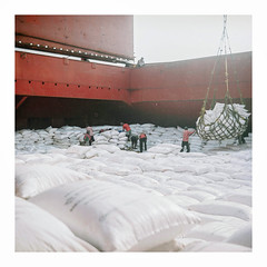 008_09 (jimbonzo079) Tags: tlr medium format 6x6 square analog 120 negative kodak portra 160 rolleicord cargo hold discharging outfall hooghly river bay bengal india asia roll mv anchorage bulk carrier bulker urea nepal greek hellas marine maritime naval utm work industry industrial trip travel world view vintage old film art steel life colour color 2015 ocean sea ship vessel boat onboard interior new people workers indian heavy crane portra160 newportra160 kodakportra160 newkodakportra160 rolleicordiii