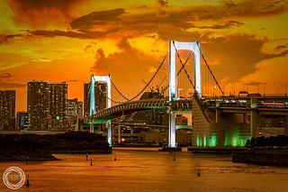 Tokyo Rainbow Bridge in Golden Glow