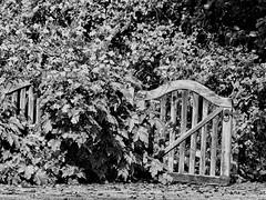 Monochrome Gate (Gilder Kate) Tags: gate gardengate gateway wooden wood wey weynavigation westbyfleet surrey towpath panasoniclumixdmctz70 panasonic panasoniclumix lumix dmctz70 tz70