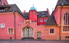 Freiburg im Breisgau (correia.nuno1) Tags: alemanha badenwuttemberg freiburgimbreisgau férias geologia geologie geology monumentos schwarzwald