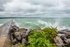 20170819-IMG_5718-WM (Pamela McLellan Zmija) Tags: saugeenshores portelgin lakehuron august2017 waves water beach beachlife cottagelife cottage pamelazmijaphotography pamelamclellanzmija