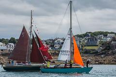 Lady Larissa and Woodwind dressed (Matchman Devon) Tags: classic channel regatta 2017 paimpol lady larissa woodwind