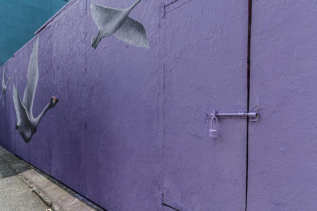 WATERFORD WALLS [AN ANNUAL INTERNATIONAL STREET ART FESTIVAL]-132031