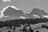 Enveloping the Platt- and Langkofel (ShutterBasset) Tags: seiseralm dolomites bw bnw italy sudtirol bolzano clouds atmosphere trees mountains hills sassolungo sassopiatto nikon afs70300vr clearskies weather