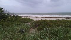 20170909_095133 (immrbill3) Tags: beach florida fortlauderdale ftlauderdale floridabeach ocean
