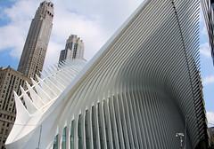 Dinosaur Bones (chantsign) Tags: worldtradecenter newyorkcity manhattan transportationhub suor soaring white gray skyscrapers