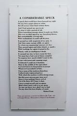 MuseumOfPrinting-544 (Juan Kafka) Tags: 2017 boston letterpress museumofprinting printing type typecon