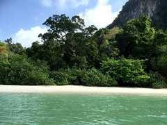 Fiming in the littoral forest of Langkawi Island.