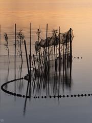 Redes de pesca (Redolí) (:) vicky) Tags: elpalmar agua red redolí olympus olympusdigitalcamera comunidadvalenciana atardecer sunset pesca vickyepla flickr valencia