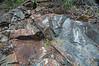 Thunderhead Sandstone (Neoproterozoic; Meigs Falls roadcut, Great Smoky Mountains, Tennessee, USA) 8 (James St. John) Tags: thunderhead sandstone precambrian proterozoic neoproterozoic great smoky mountains national park tennessee