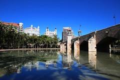 IMG_7807 (AndyMc87) Tags: reflection valencia turia bridge brücke water clear sky blue palms shadow architecture building canon eos 6d 2470 l