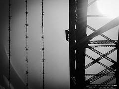 Crossing the bridge is actually walking alongside of it. (doubleshotblog) Tags: barbedwire doubleshotblog doubleshot iphone7 iphoneography iphonephotography bridge bridgelove blackandwhite portjackson crossing australia sydney sydneyharbourbridge