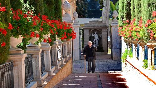 Grandpa takes a stroll