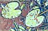 WATER leaves (plismo) Tags: waterpads waterlilypads leaves water waterlillies pondlily art illustration plismo peterborough ontario canada jacksoncreek